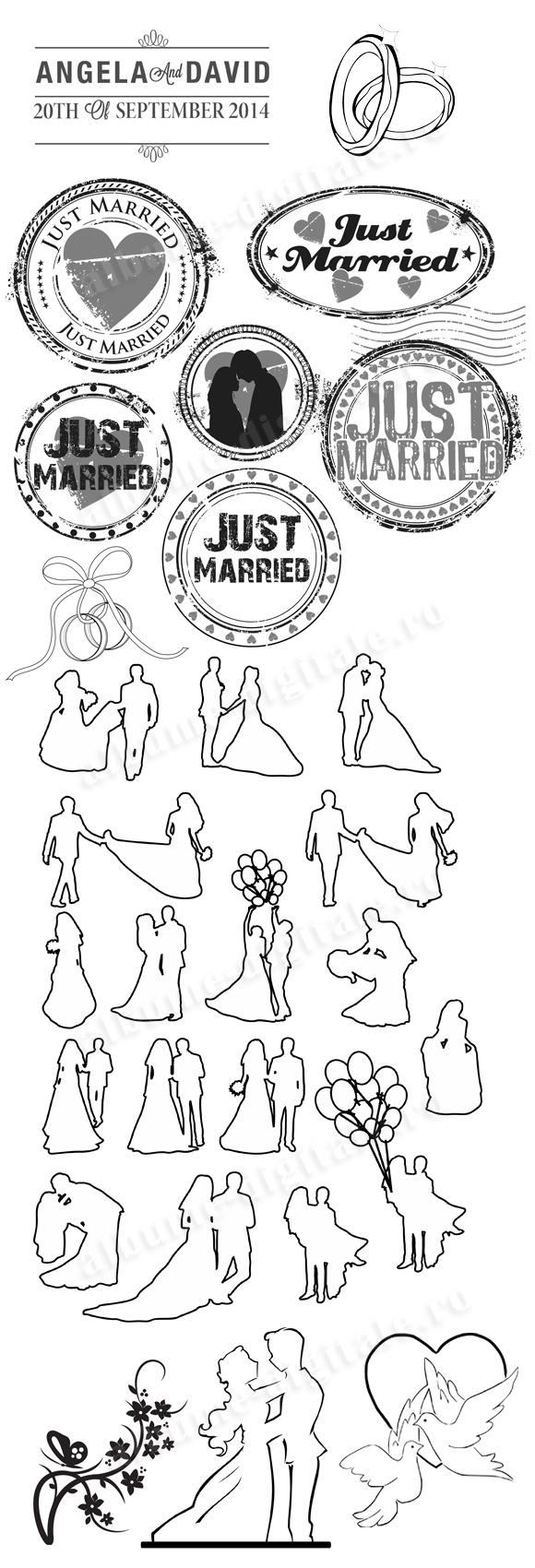 Albume nunta