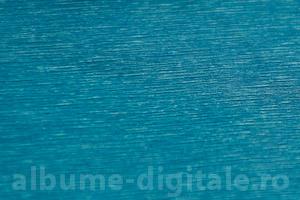 CTB -albastru-deschis