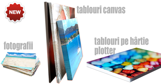 Tablouri canvas absolventi