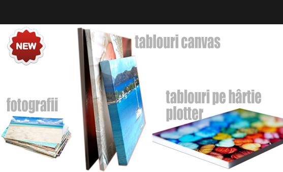 Tablouri canvas si printuri